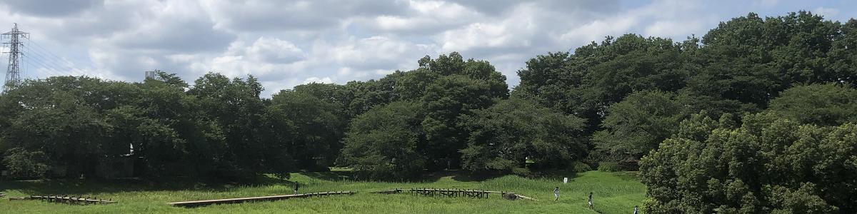 夏の大宮公園2020